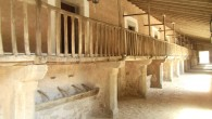 Beginner's Lluc: Majorcan Culture in the Heart of the Tramuntana